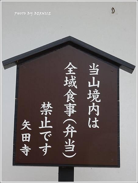 DSC09020_副本.jpg