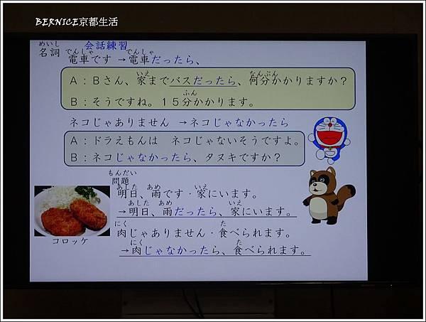 DSC09603_副本.jpg