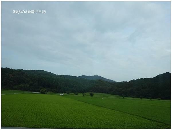 DSC00313_副本.jpg