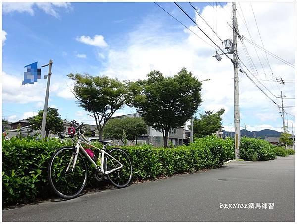 DSC00328_副本.jpg
