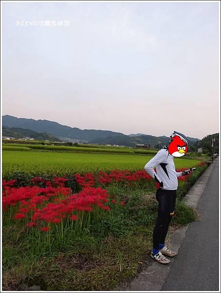 DSC01178_副本.jpg