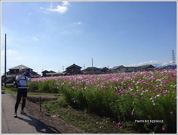 DSC01460_副本.jpg