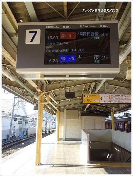 DSC04684_副本.jpg