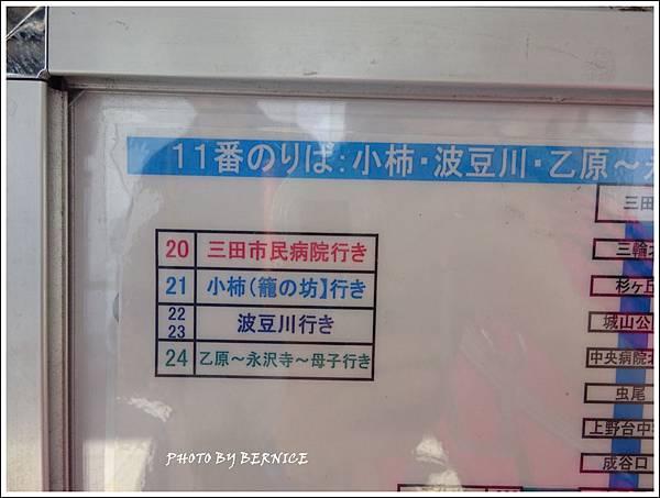 DSC05571_副本.jpg
