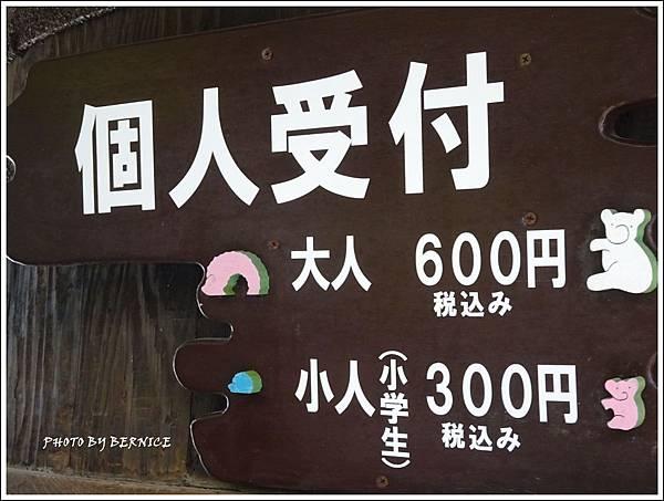 DSC05582_副本.jpg