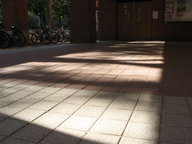 2010/2/10 中正大學