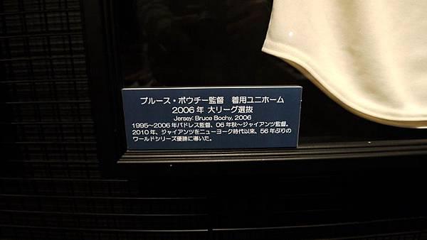 P1070762 (800x450)