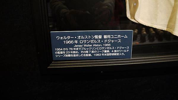 P1070752 (800x450)