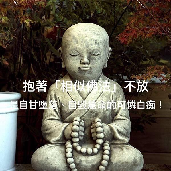 抱著「相似佛法」不放,是自甘墮落、自毀慧命的可憐白痴!.jpg