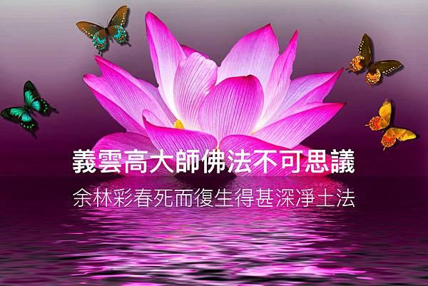 義雲高 大師佛法不可思議余林彩春死而復生得甚深凈土法.jpg