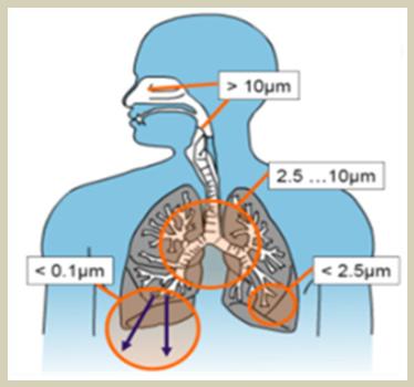 PM2.5進入身體圖片來源-空氣品質改善維護資訊網.jpg