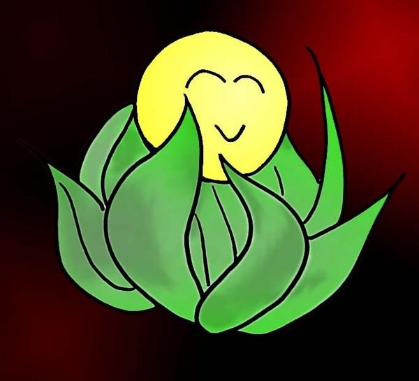 太陽草畫太陽草