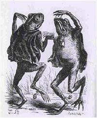 crapaud-青蛙惡魔.jpg