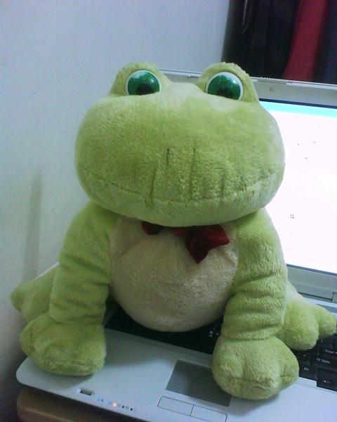 沙巴海洋公園來的青蛙玩偶