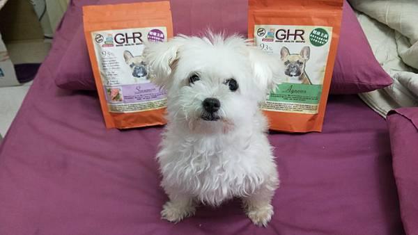 IMG20180928111206GHR健康主義無榖犬糧