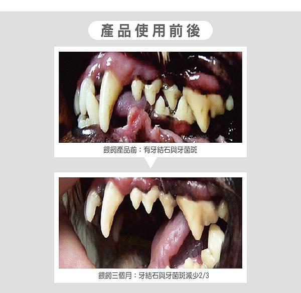 EDM_05DAN丹成老犬口腔+骨骼配方 牛肉鮪魚番茄口味