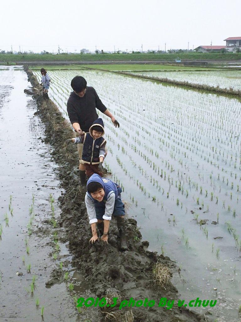 稻田_2007.jpg