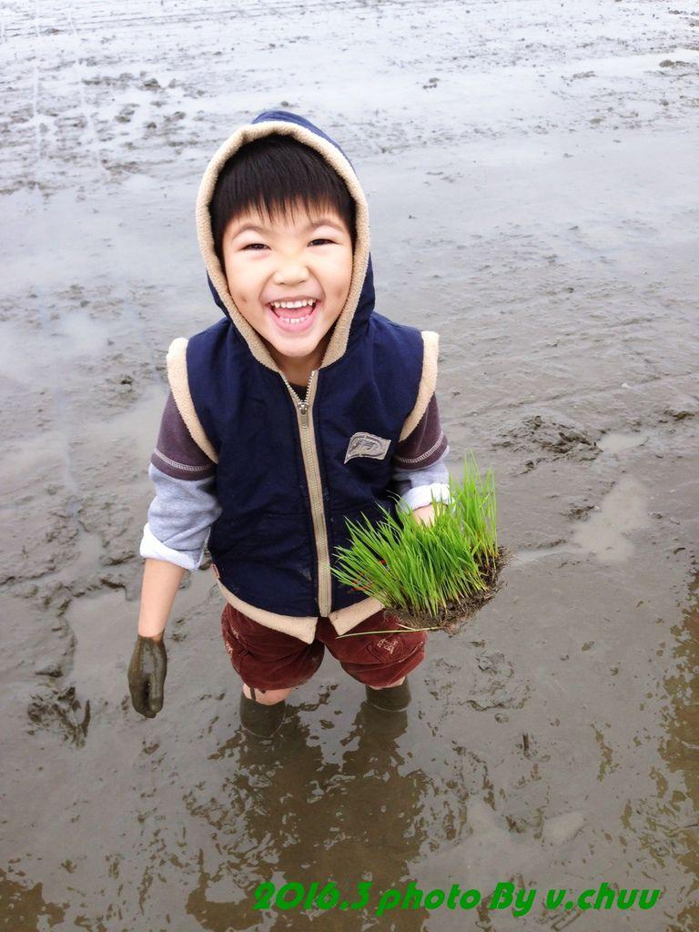 稻田_3952.jpg