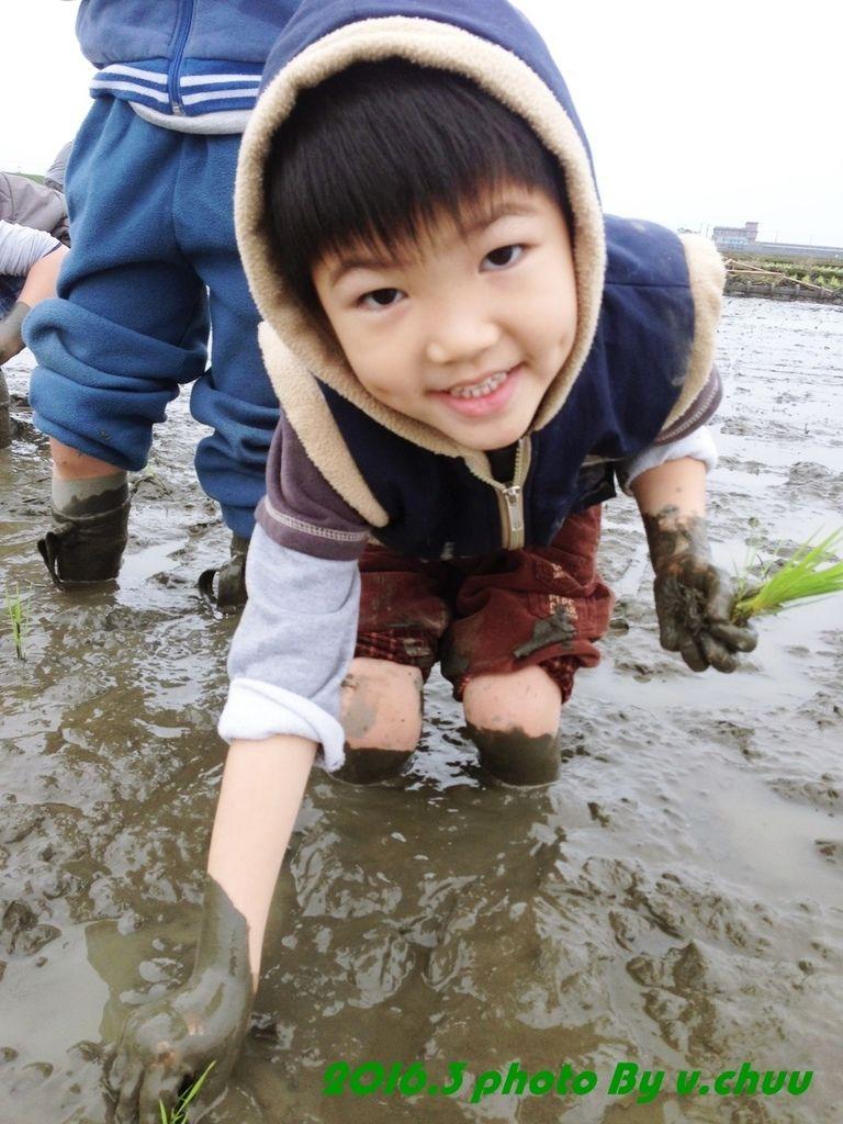 稻田_8467.jpg