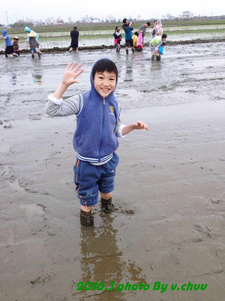 稻田_8714.jpg