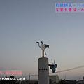 20120819.騎鐵馬_017
