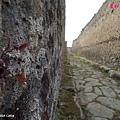 20130920-06 Pompeii_DSC02655.jpg