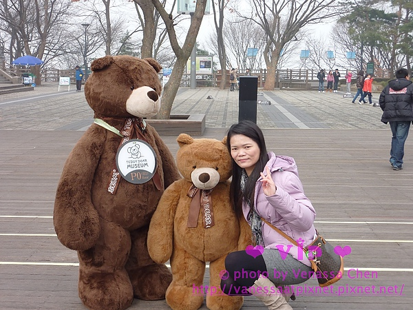 Teddy Bear @ 南山公園。