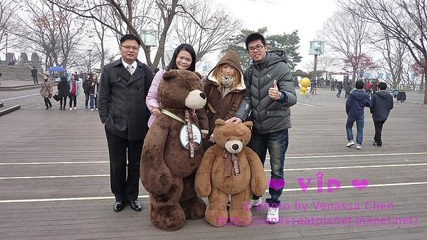Teddy Bear @ 南山公園。