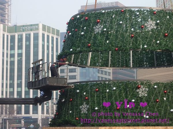 街頭正在裝設的耶誕樹。