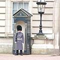白金漢宮裡的警衛 (偷偷告訴你...他在打瞌睡喔)