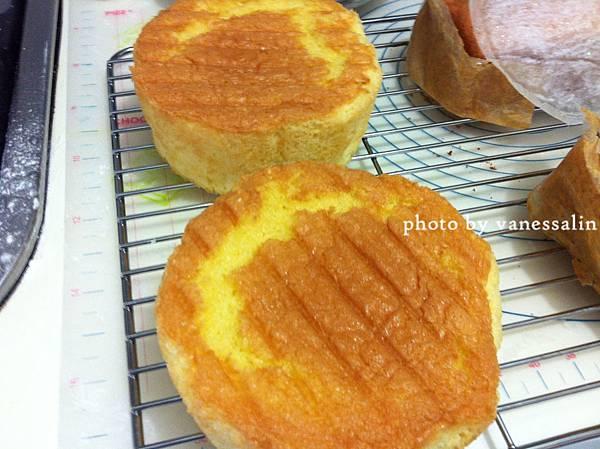 海棉蛋糕10