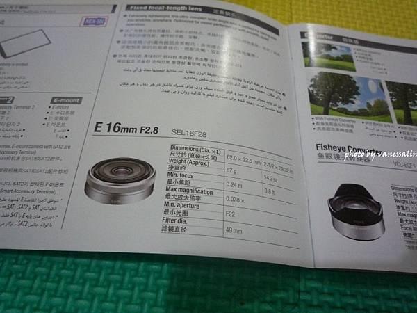 P1120237.JPG