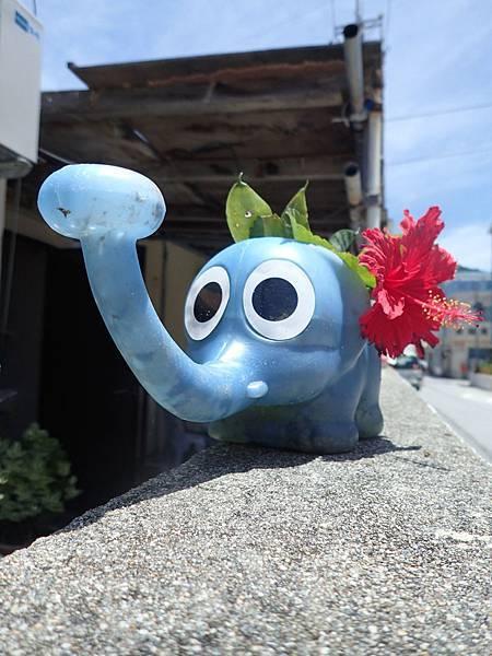 20140622渡嘉敷島(防水相機) - 0944.jpg