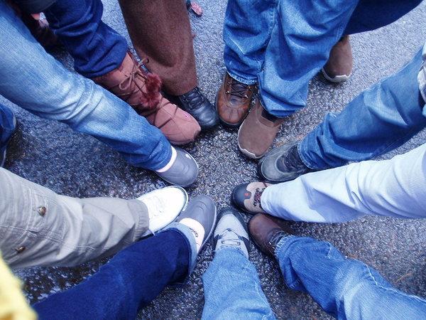 數一數有幾隻腳?
