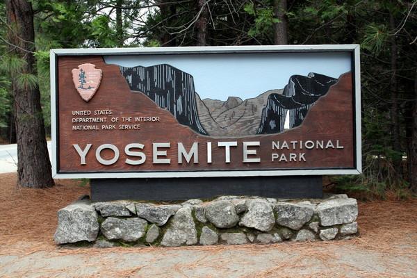 bye bye~Yosemite Park