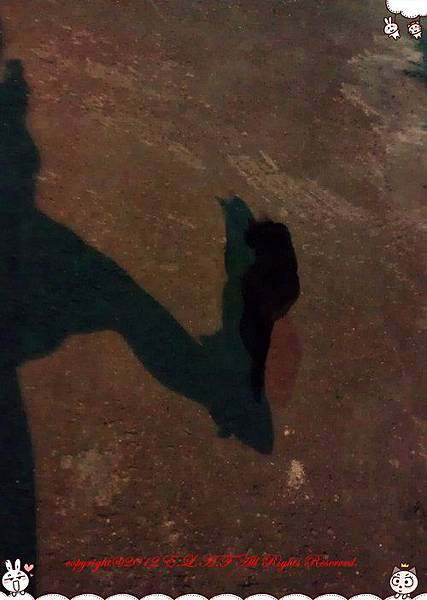 影子飛踢術
