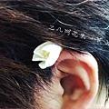 2013-04-18 07.20.19_副本.jpg