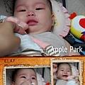 Apple Park-廚師小牛1