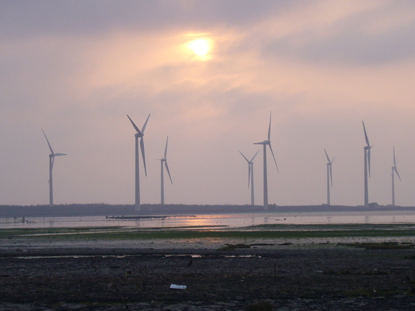 高美風車下的夕陽1.JPG