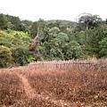 01Dalat 02Ta Nung Valley16.JPG