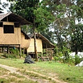 02菲律賓巴拉旺14山區.JPG