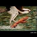 藍陽畫室展-杜秀良 01-11
