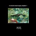 藍陽畫室展-杜秀良 01-16