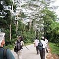 02菲律賓巴拉旺16山區.JPG