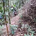 01Dalat 02Ta Nung Valley15.JPG