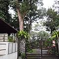 01菲律賓Mt Makiling13植物園.JPG