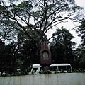 01菲律賓Mt Makiling06.JPG