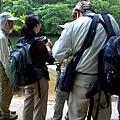 02巴拉旺08紅樹林河流.JPG