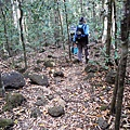 03Cat Tien NP 02 Trail02.JPG