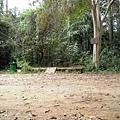 03Cat Tien NP 03鱷魚湖09.JPG